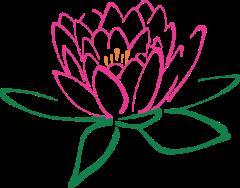 Espace Lotus Multiservices